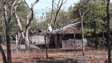 Dernières nouvelles de l'association «Nicarali»